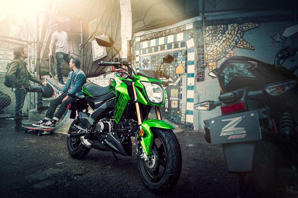 None Kawasaki Z125 Pro Range view details
