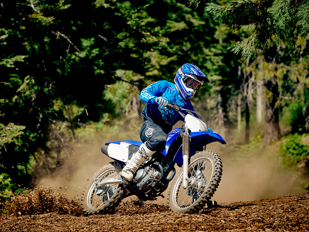 Yamaha TT-R230 in Team Yamaha Blue and White colour, being ridden off-track